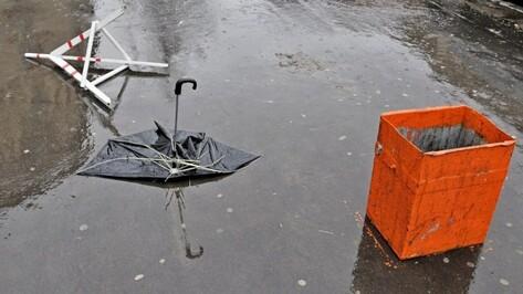 Спасатели предупредили о грозе и сильном ветре в Воронежской области