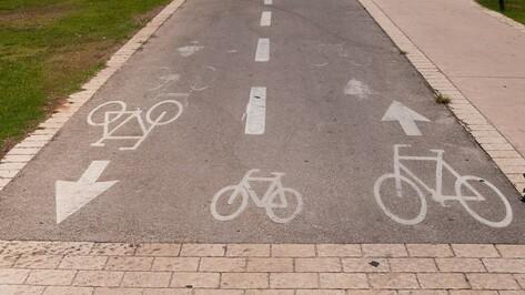 Власти Воронежа выделят 25 млн рублей на строительство велодорожек вокруг водохранилища