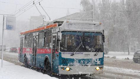 В мэрии Воронежа назвали причину малого количества троллейбусов на маршрутах