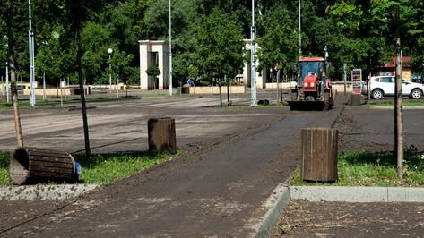 Ремонт подъездных путей в воронежском Центральном парке потребует до 1,65 млн рублей