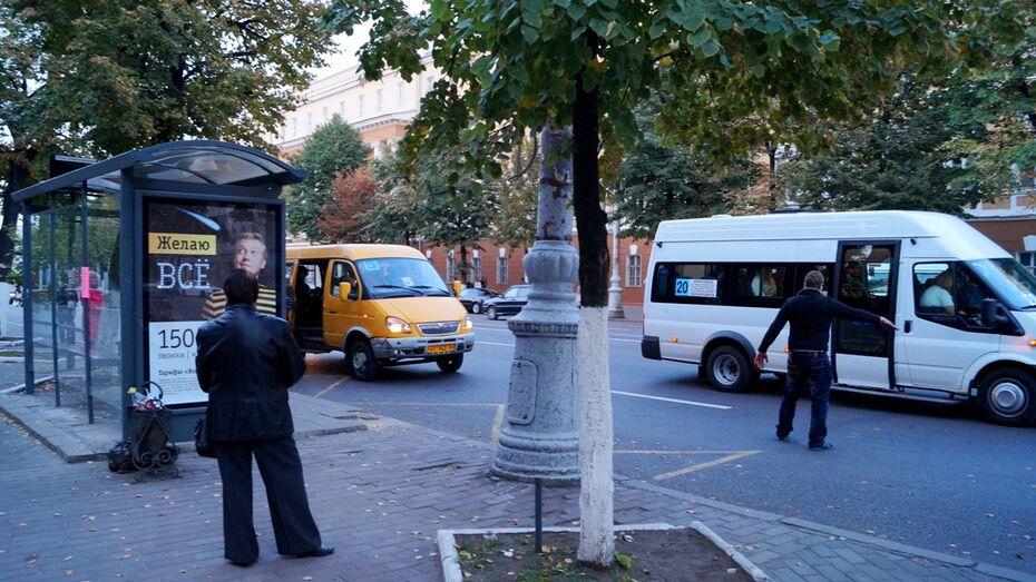 «Пешеходный Воронеж» предложил обезопасить переход на проспекте Революции