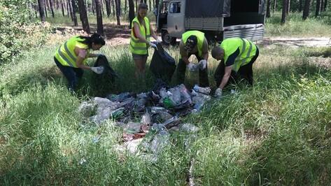 Из лесов Воронежской области за лето вывезли 150 кубометров мусора
