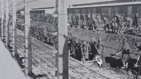 В Воронеже откроется выставка о судьбе советских военнопленных в Германии