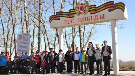В Бутурлиновском районе завершилась акция «Лес Победы»