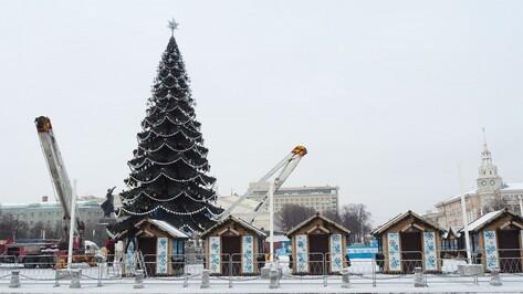 В Воронеже установили главную новогоднюю елку за 7 млн рублей