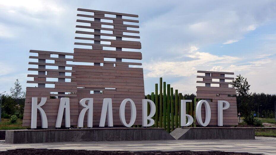 Проект из Воронежской области победил на всероссийском конкурсе «Проектный Олимп 2021»