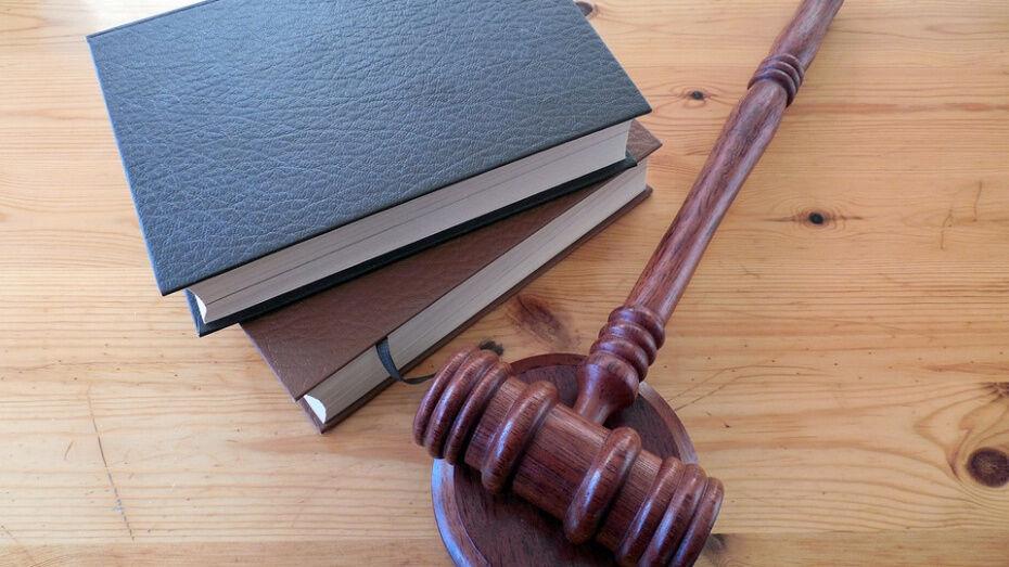 За сгоревший в Верхнемамонском районе лес в суде ответят пятеро россошанцев