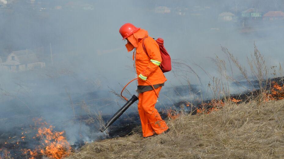 В Верхнемамонском районе количество ландшафтных возгораний  выросло в 3,5 раза