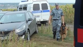 Хроника РИА «Воронеж». Как искали перлевского убийцу