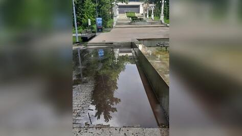 Центральный парк в Воронеже вновь закрыли на 3 дня после ливня