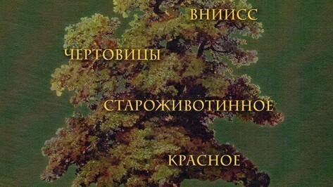 Рамонский краевед издала книгу о сельском поселении Айдарово