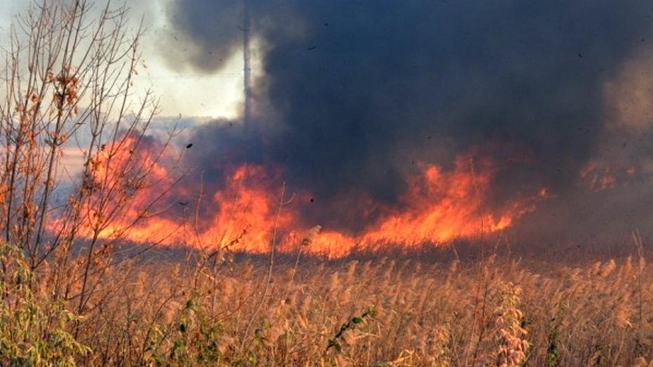 На Богучарщине потушили первые в 2016 году ландшафтные пожары