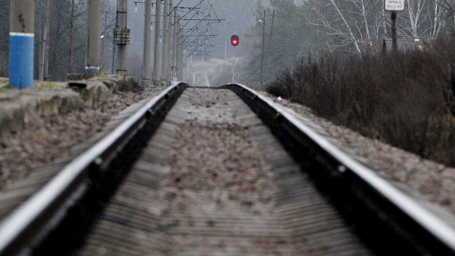 Локомотив снес «девятку» на ж/д переезде в Воронежской области: 2 человека в больнице