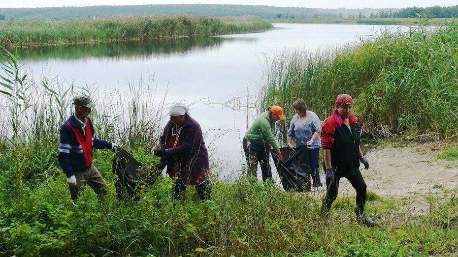 В Грибановском районе волонтеры собрали на берегу реки Савалы 100 мешков мусора