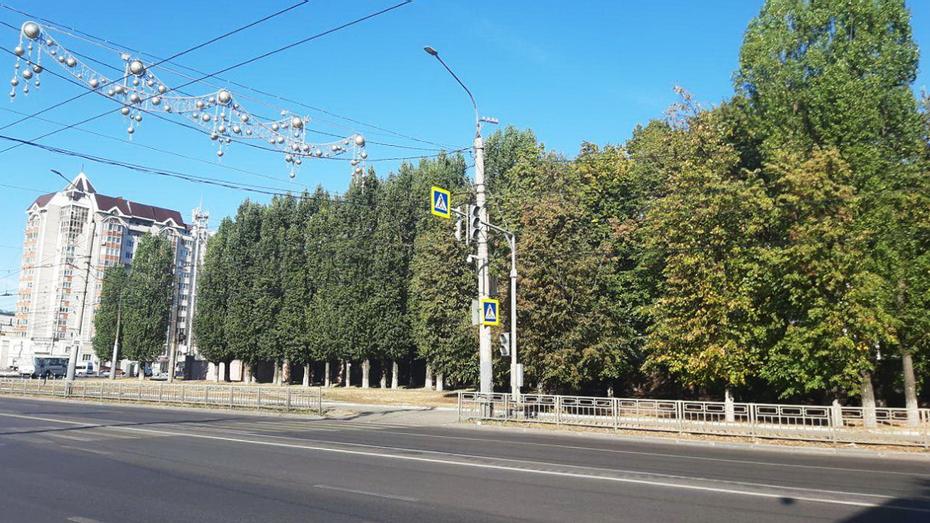 Новый светофор установили в Воронеже рядом с памятником самолету