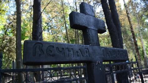 Воронежцев позвали на бесплатные экскурсии по Коминтерновскому кладбищу