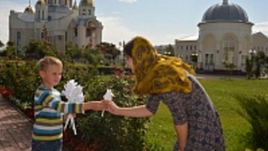 В Россоши пройдет акция «Белый цветок»