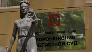 Адвокаты Надежды Савченко направили в Воронежский облсуд жалобу на ее арест