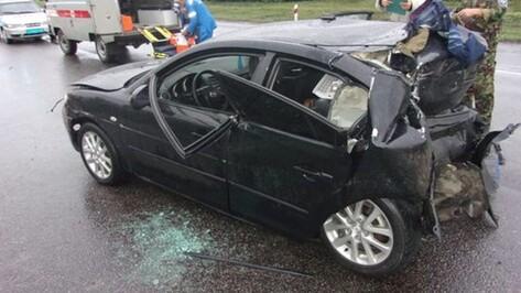 В ДТП в Павловском районе  погиб мужчина и пострадал ребенок