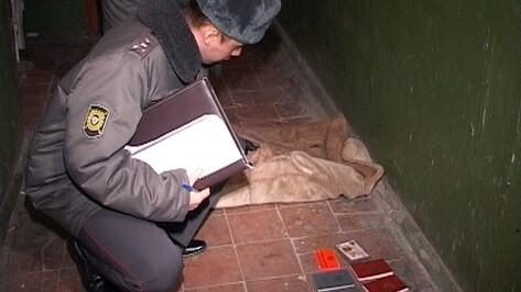 Воронежцы за сутки совершили в Курске 11 краж, угон машины и грабеж