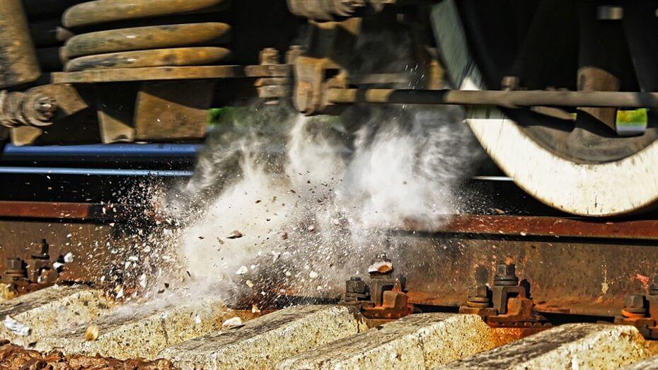 Шестиклассники из Воронежа положили на рельсы камни, чтобы увидеть, как сойдет поезд
