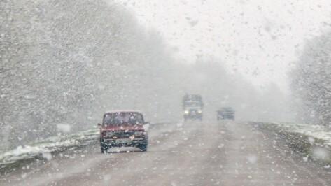 Синоптики: Воронежская область избежит снегопада, накрывшего ростовские трассы