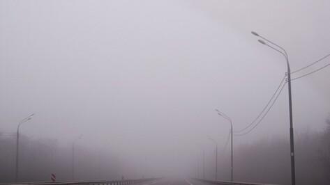 Гидрометцентр России предупредил жителей Воронежской области о тумане