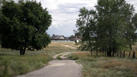 Воронежское «Агроэко» пойдет навстречу жителям в переносе свинокомплексов дальше от сел