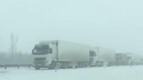 В Воронежской области из-за метели на трассе М-4 «Дон» образовалась пробка в 15 км