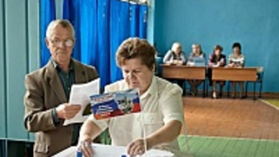 В Аннинском районе на выборы губернатора главы района и депутатов райсовета пришло 90,3% избирателей