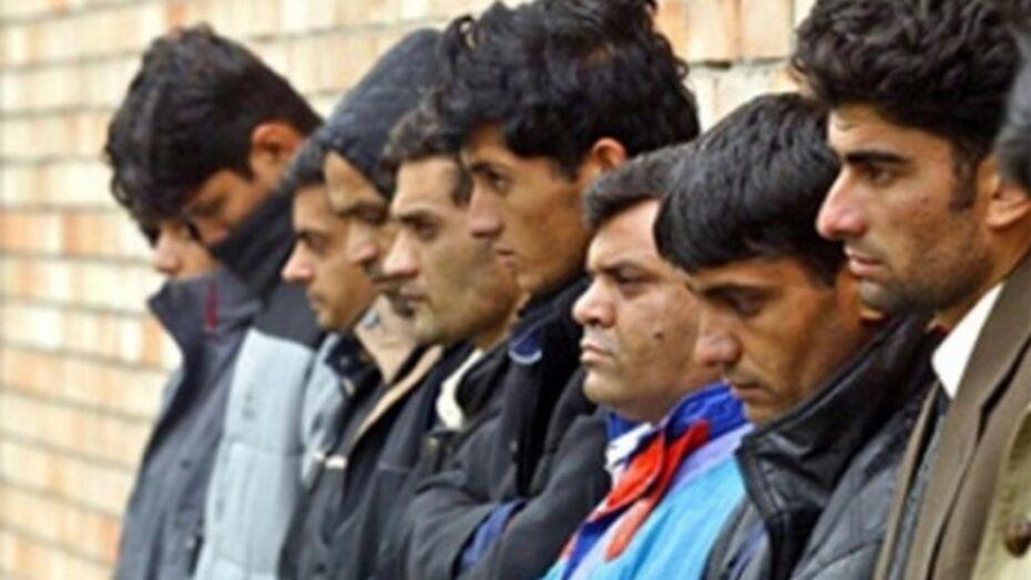 В новом году число трудовых мигрантов в России снизилось на 70%