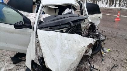 Водитель легковушки погиб после ДТП с большегрузом в Воронежской области