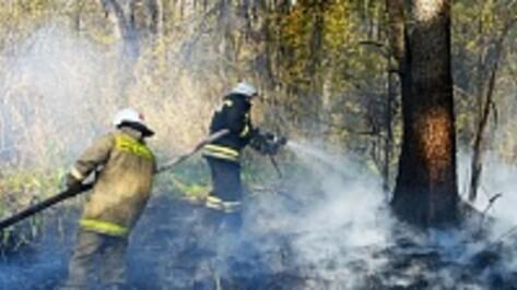 Под Борисоглебском загорелись заливные луга