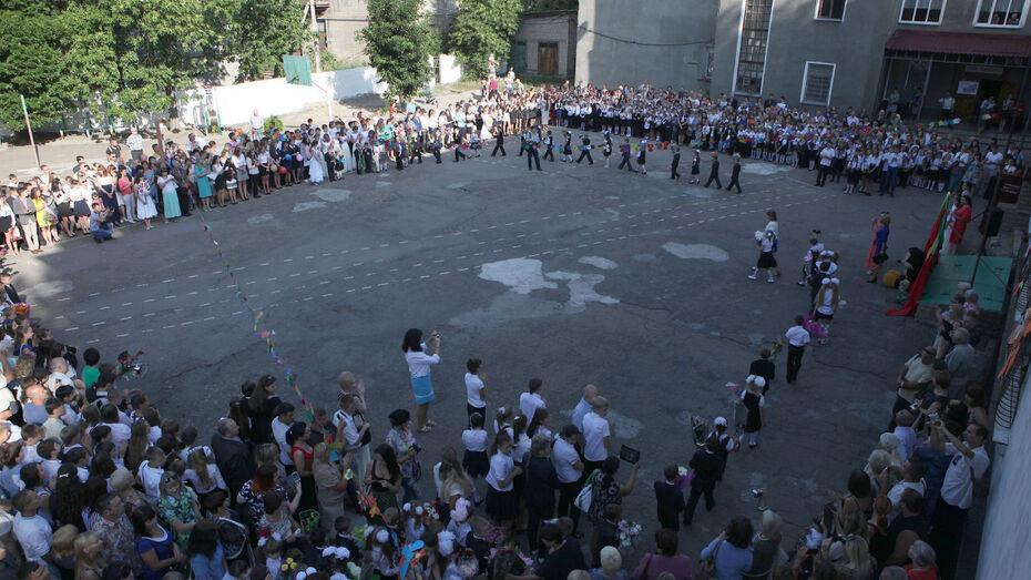 Школы Воронежской области 1 сентября примут более 234 тыс учеников