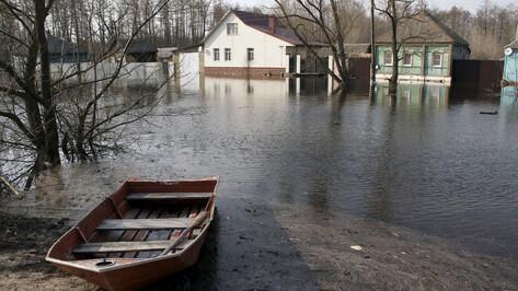 Городские спасатели предупредили о возможных местах затопления в Воронеже