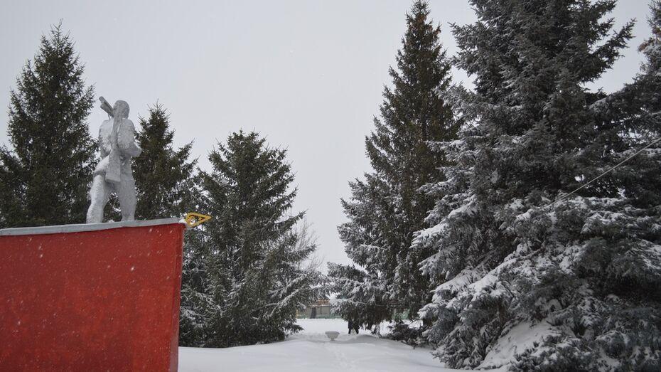 В павловском селе хулиганы обезглавили 15-метровую ель