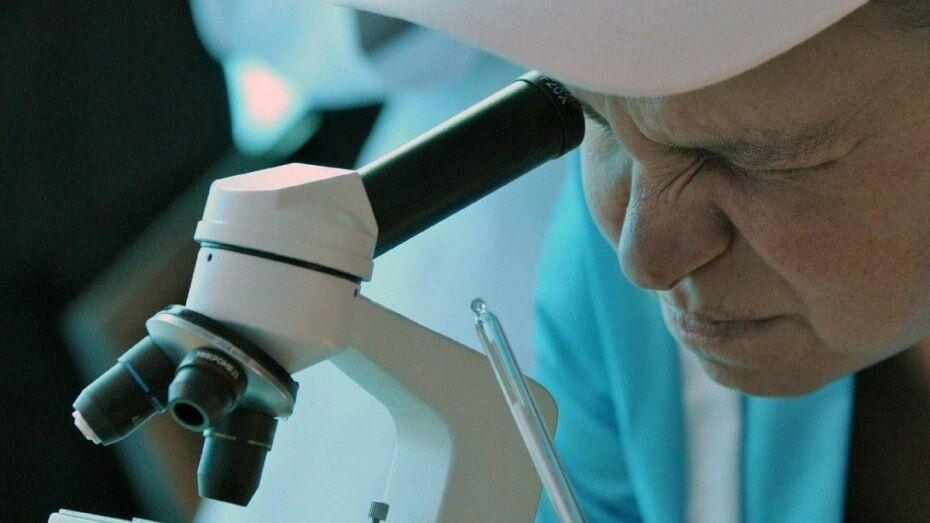 Воронежская область вошла в топ-15 российского рейтинга по уровню развития науки