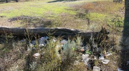 Под Воронежем расчистили берег реки Усманки