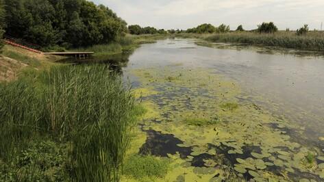 В Воронежской области завершили основные работы по восстановлению русла реки Битюг