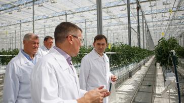 Председатель Воронежской облдумы оценил перспективы развития овощеводческой отрасли