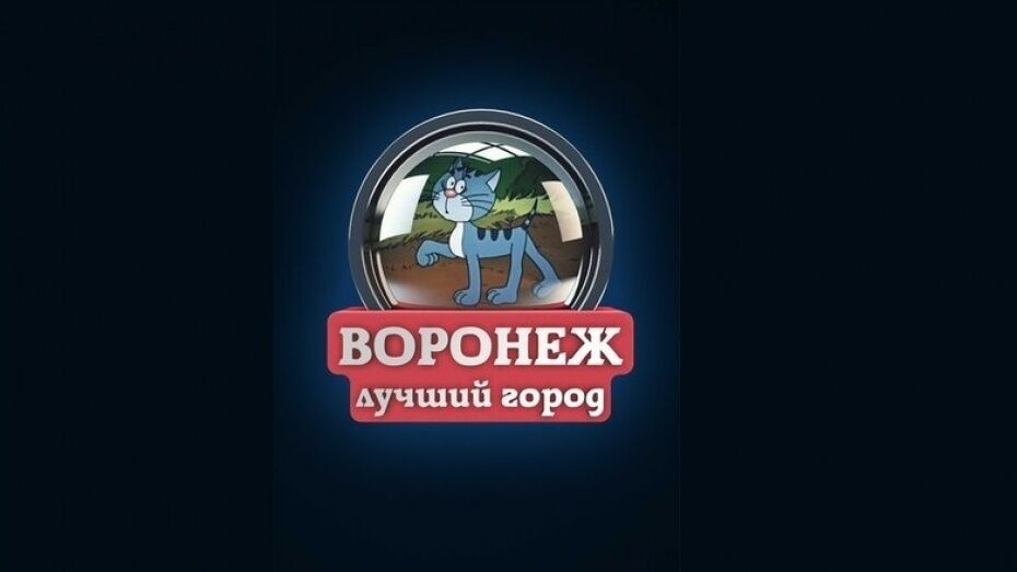 Администрация «ВКонтакте» разблокировала сообщество «Типичный Воронеж»