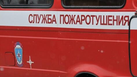 В Воронеже сгорел микроавтобус Mercedes