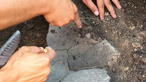 В Воронежской области откопали еще одно древнее поселение
