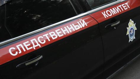 Дело об убийстве младенца в Воронежской области проконтролирует центральный аппарат СК