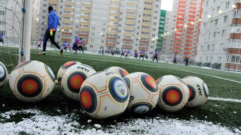 В Воронеже появятся 2 футбольных поля и 6 многоэтажек