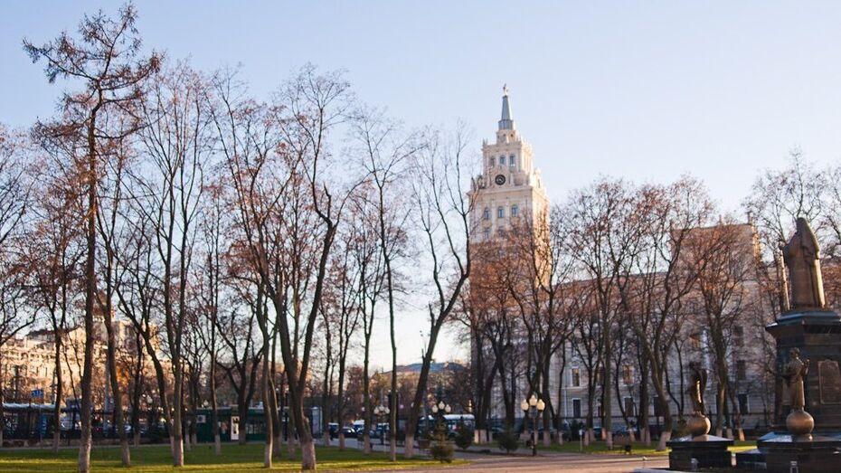 Проект планировки центра Воронежа горожане обсудят на публичных слушаниях