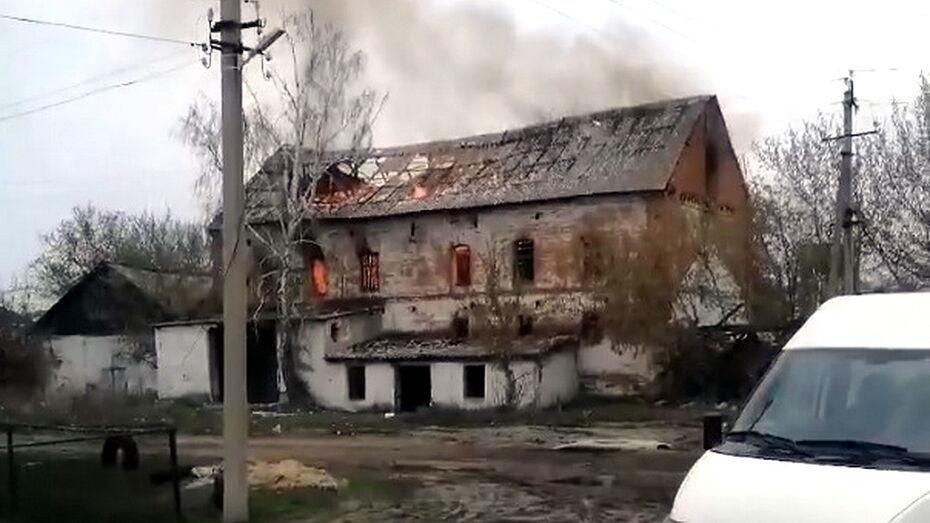 Заброшенная мельница вспыхнула в воронежском селе
