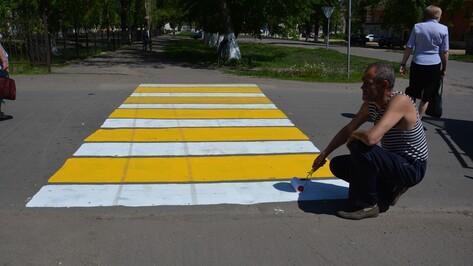 В Поворино нарисовали 12 «зебр»