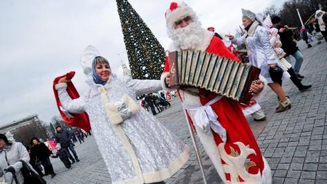 В городских новогодних праздничных мероприятиях примут участие 80 тыс воронежцев