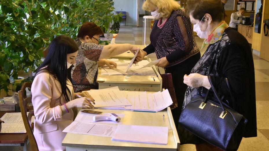 В Общественной палате РФ высоко оценили явку на выборы в Воронежской области